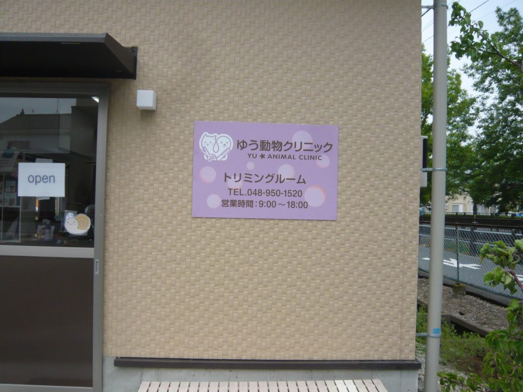 P1340465